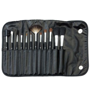 12 Piece Professional Brush Set