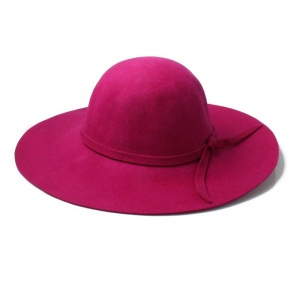 Raspberry Floppy Fedora